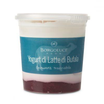 Yogurt di latte di bufala alla Fragola
