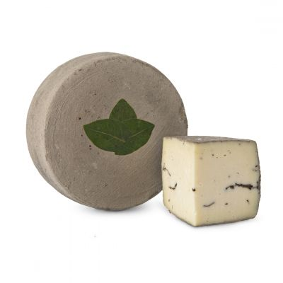 Sottocenere cheese with truffle