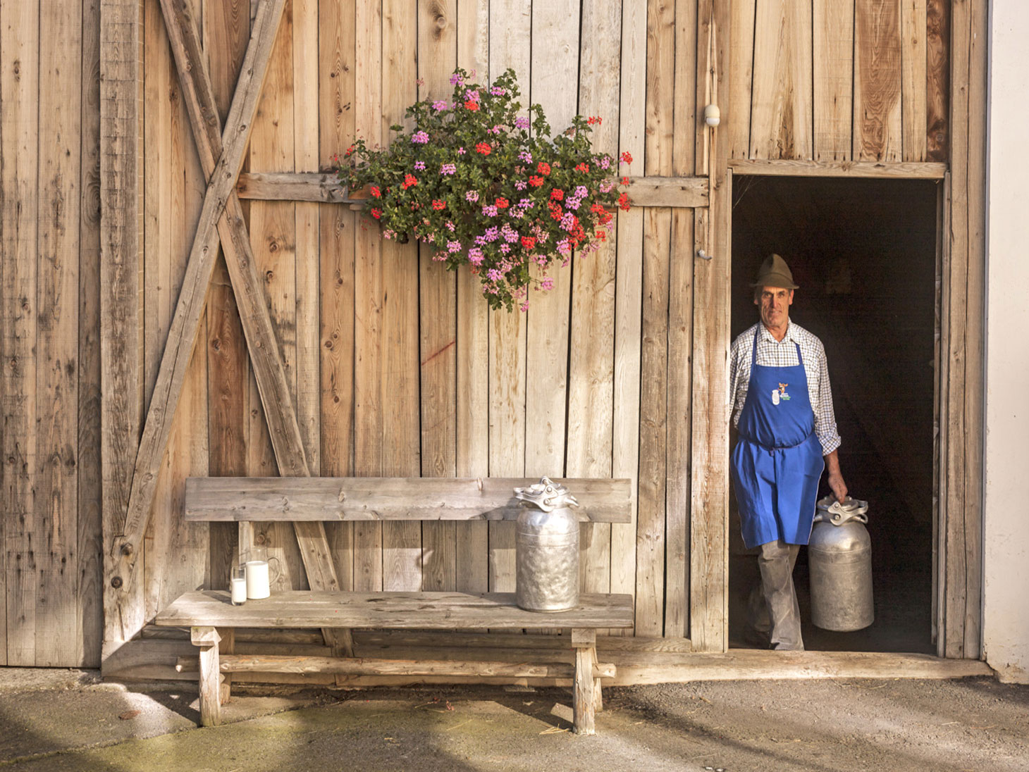 Tre cime: hay milk and sustainability